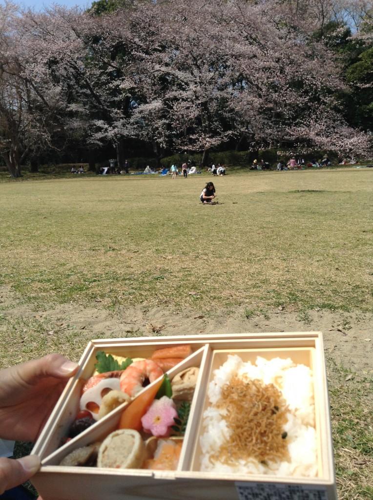 恒例 菊乃井さんのお弁当♪